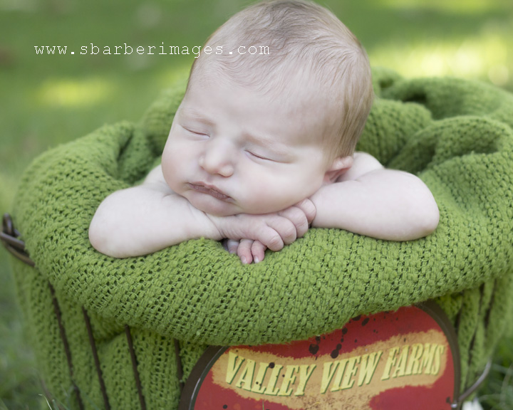 memphis baby photographer